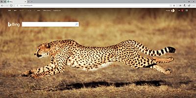 既定ブラウザが「Microsoft Edge」、検索プロバイダーは「Bing」固定
